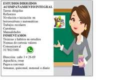 Desarrollo escolar y emocional del niño