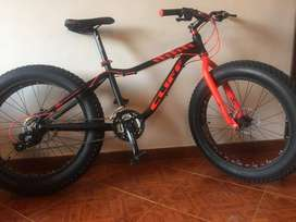 Bicicleta Cliff Lizard