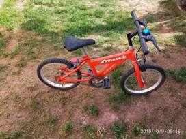 Vendo Bici Tomaselli R 14