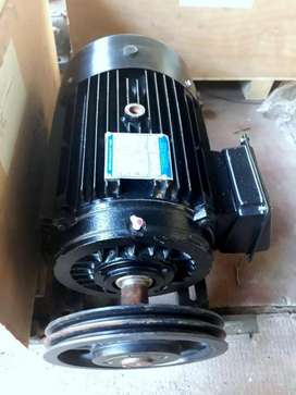 Motor Trifásico 11 kw (15 hp)