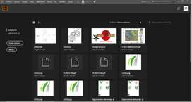 clase virtuales, programas de arquitectura y diseño gráfico