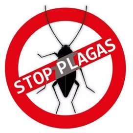 Servicio de fumigaciones y control de plagas