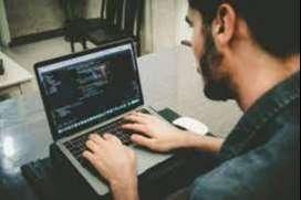 Se requiere Diseñador de Pagina Web