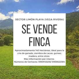 VENDO FINCA EN LA VEGA RIVERA 140 HECTÁREAS