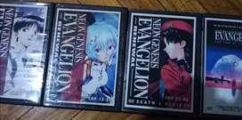Evangelion serie japonés