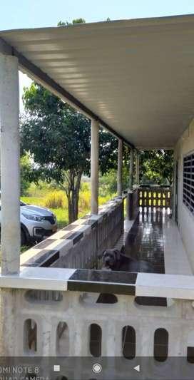 Se vende casa campestre en montañita Caquetá