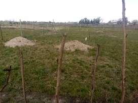 Vendo Terreno De 10×20