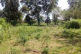 Vendo terrenos 10x30, 20x30 y 10x40. San Bernardo - Chaco.