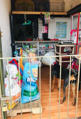 Tienda de mascota