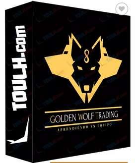Curso en linea: Golden Wolf Trading