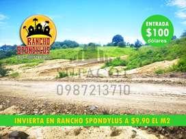 QUINTAS VACACIOANALES PARA TU CASA DE CAMPO O FINCAS FAMILIARES, LOTES DE 1.000M2 A 9.900 USD, CREDITO DIRECTO, PILE SD1