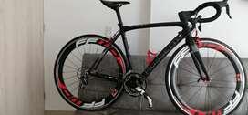 Cicla Rossetti carbono