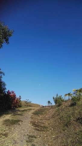 LAND FOR SALE IN CERVANTES
