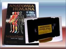 Anatomía Humana, Atlas del cuerpo humano. Libros varios.