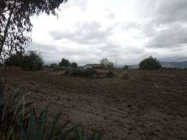 Vendo 2 cuadras de terreno pujili isinche de cofines