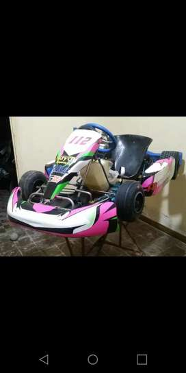 Vendo karting 110 libre