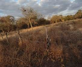 Terreno en termas de Río Hondo