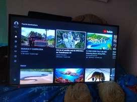 Panasonic de 43 pulgadas Smart tv perfecto