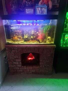 Hermoso acuario con chimenea