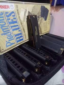Vendo Set de armónicas Hohner piedtmon blues