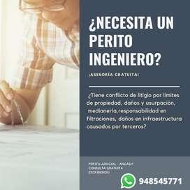 INGENIERO PERITO JUDICIAL - ANCASH