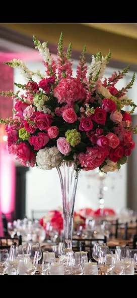 Busco florista experta