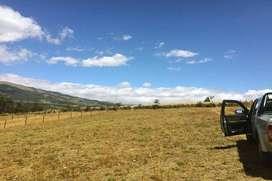 Terrenos de Venta Cayambe