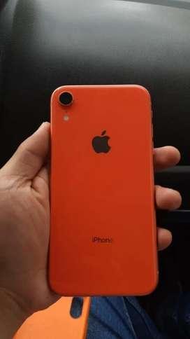 Iphone XR Coral Como nuevo