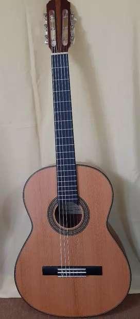 Guitarras Nacionales