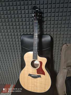 Taylor Deluxe