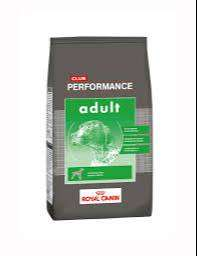 Alimento Balanceado Perro Royal Canin Performance adulto x 20kg