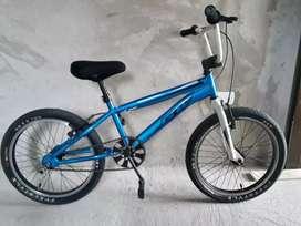 Bicicleta GW Cosmos Serpens