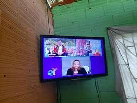 se vende televisión Philip 40