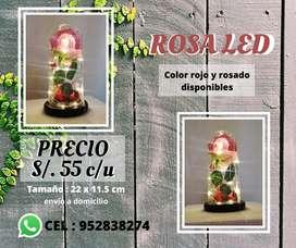 ROSA CUPULA DE CRISTAL LED