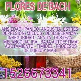 Curso de Terapia floral ( Flores ds Bach)