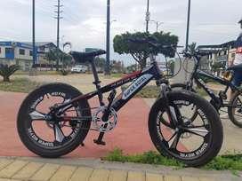 Bicicleta en buen estado Aro 20