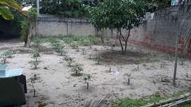 Se vende lote de terreno en el corregimiento de caracoli.