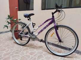 Bicicleta Oxford Onix