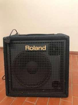 Amplificador Roland Kc 300 - Para Teclado 80w