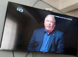televisor Sankey 49