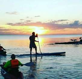 Iniciacion Stand Up Paddle y Windsurf