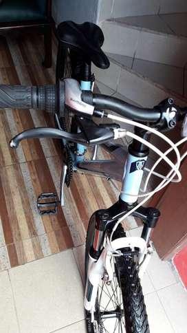 Bicicleta de gama alta