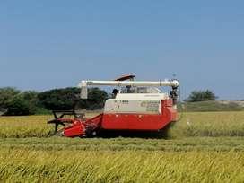 Cosechadora de arroz K-BOS, año 2018