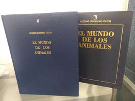 El mundo de los animales