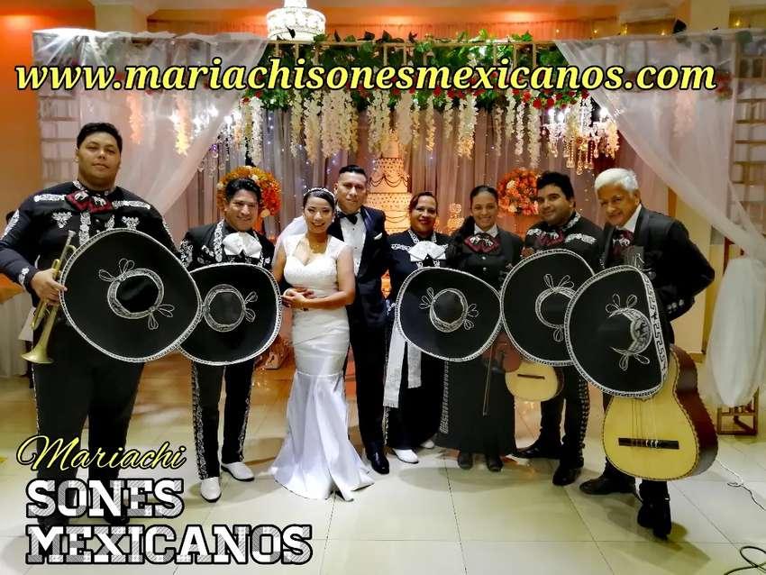 Serenata económica con mariachi 0