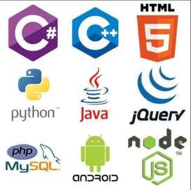 Experto brinda asesoria trabajos en programacion (java,c++,php,vb,android,ios,js,python,nodejs)