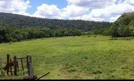 Chacra 92 hectáreas en misiones.