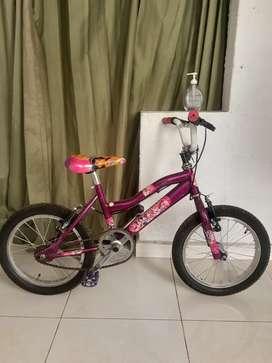 Bicicleta para niña ( Rosa, princesa)