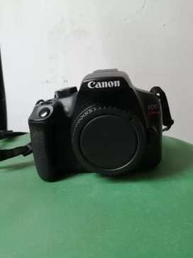 Cámara DSLR Canon T6