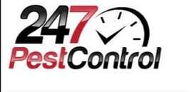 Fumigaciones Pest Control 24/7 Exterminación de plagas Insectos y roedores Pulgas cucarachas Acaros ratas o ratones